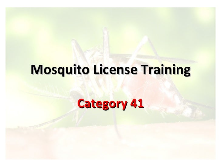Mosquito License Training Category 41