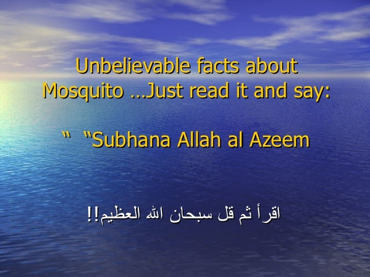 "Unbelievable facts about Mosquito …Just read it and say:   ""Subhana Allah al Azeem ""   اقرأ ثم قل سبحان الله العظيم !!"