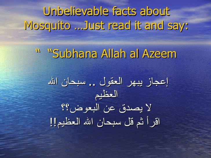 "Unbelievable facts about Mosquito …Just read it and say:   ""Subhana Allah al Azeem "" إعجاز يبهر العقول  ..  سبحان الله   ا..."