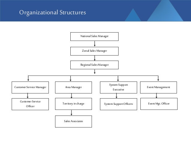 nestle company organizational structure