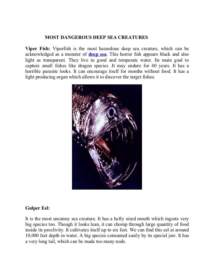 MOST DANGEROUS DEEP SEA CREATURESViper Fish: Viperfish is the most hazardous deep sea creature, which can beacknowledged a...