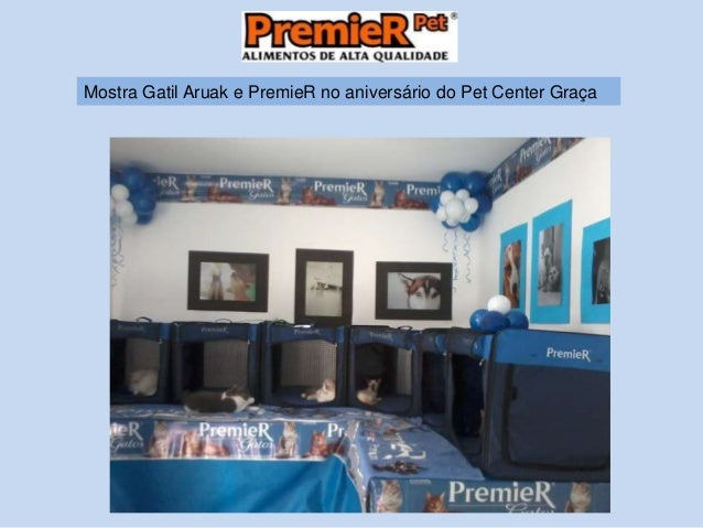 Mostra Gatil Aruak e PremieR no aniversário do Pet Center Graça