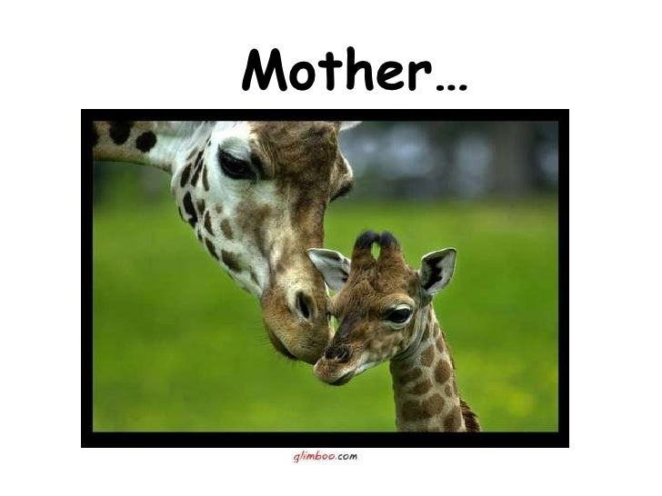 Mother…
