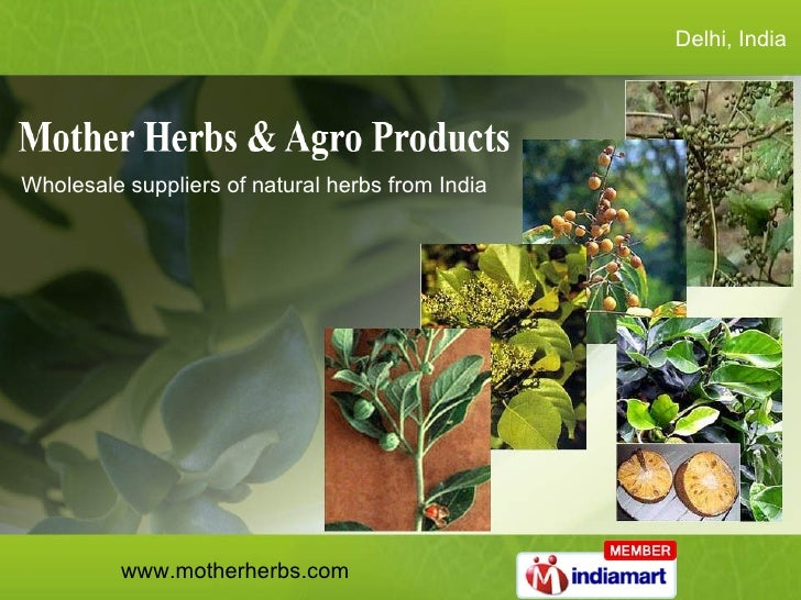 Delhi, India  Wholesale suppliers of natural herbs from India