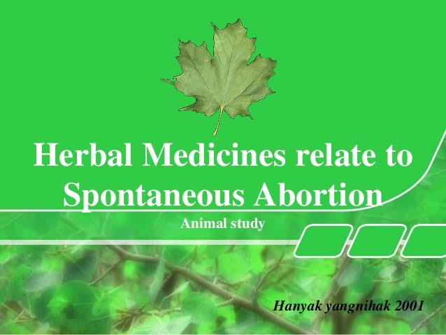 Motherisk round herbal medicine/최준식 교수