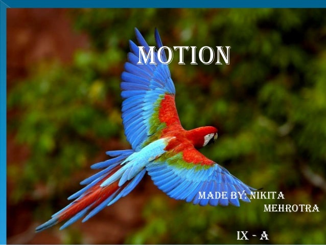 MOTION MADE BY: NIKITA MEHROTRA IX - A