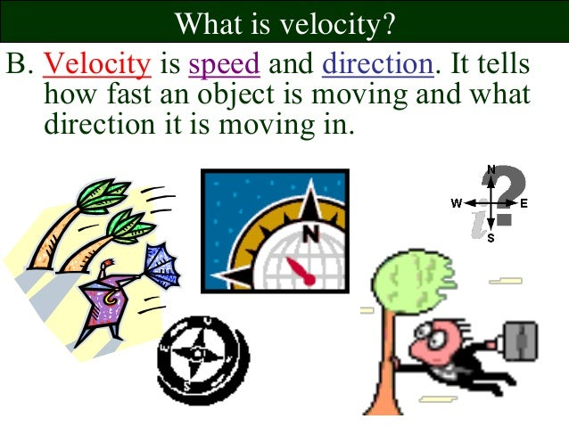 Velocity Cars Review