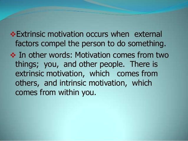 intrinsic and extrinsic factors in job satisfaction pdf