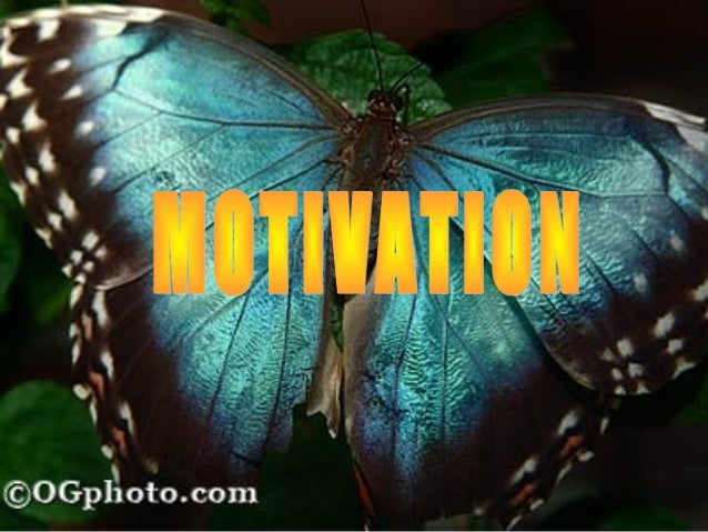 "What is motivation?Coming from the Greek word ""movere,"" which means to move, motivation involves the question of why peop..."