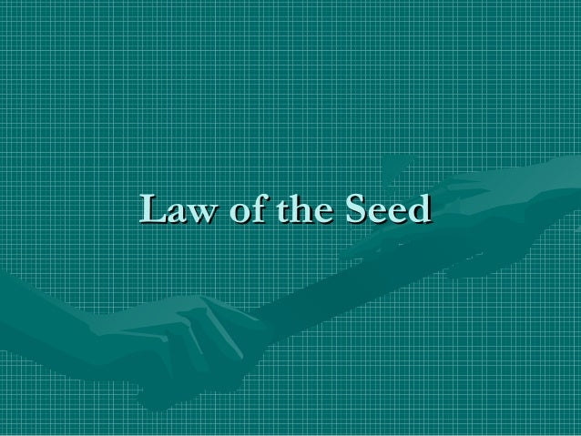 Law of the SeedLaw of the Seed
