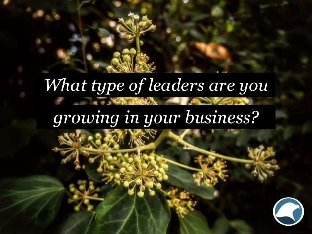 What type of leaders are you growing in your business?