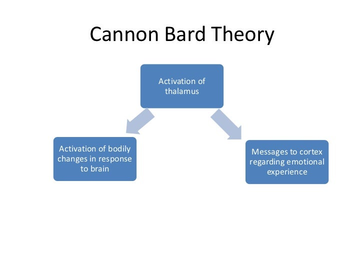 cannon bard theory