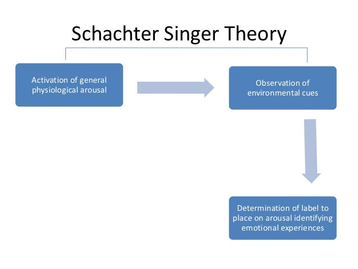 """critic of schachter singer emotion theory Emotion essays & research papers  emotion and schachter-singer theory  """"man is a bundle of emotions"""" meeran ali famous film critic roger ebert has said."""