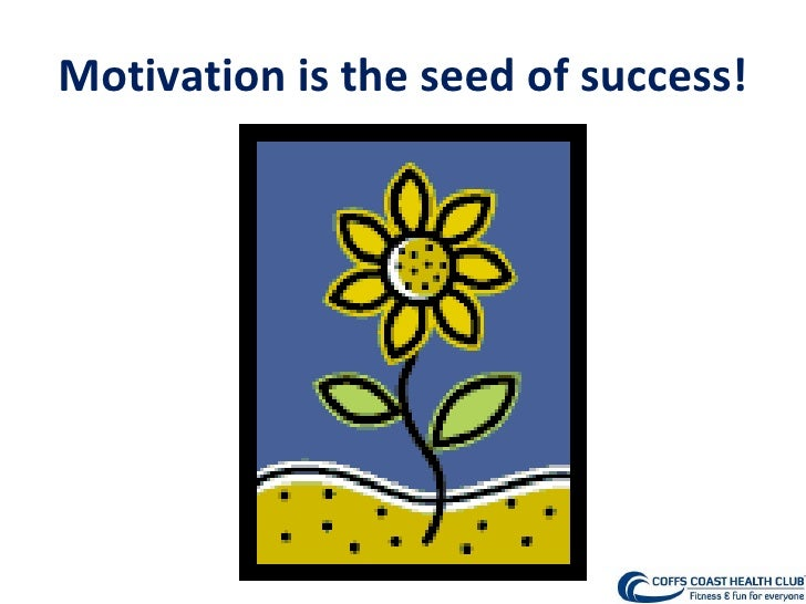 Motivation is the seed of success!