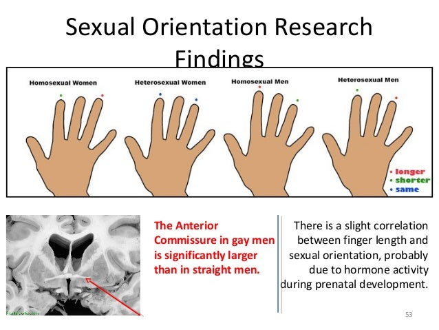 Link between finger length and sexuality