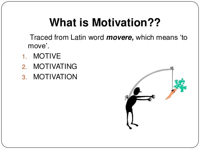 asesessing the two theories of motivation Learn the main motivation theories and how  herzberg's hygiene model – the next of the major motivation theories, herzberg argues that there are two main .