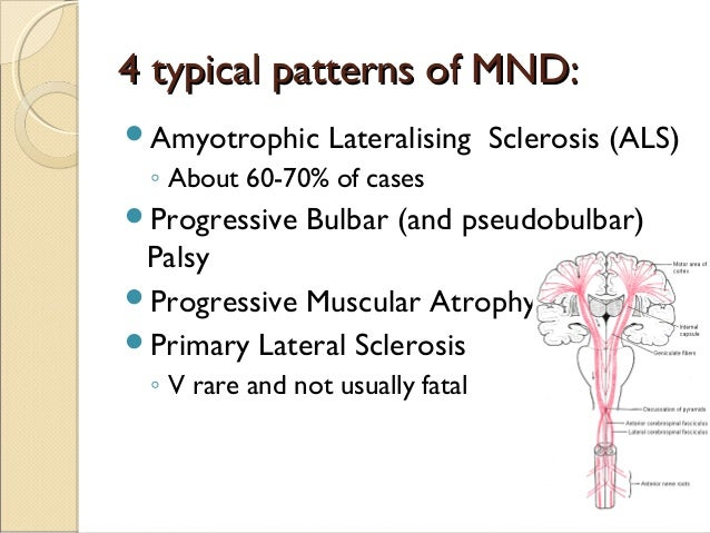 Motor Neurone Disease Pathogenesis And Therapeutic Potential