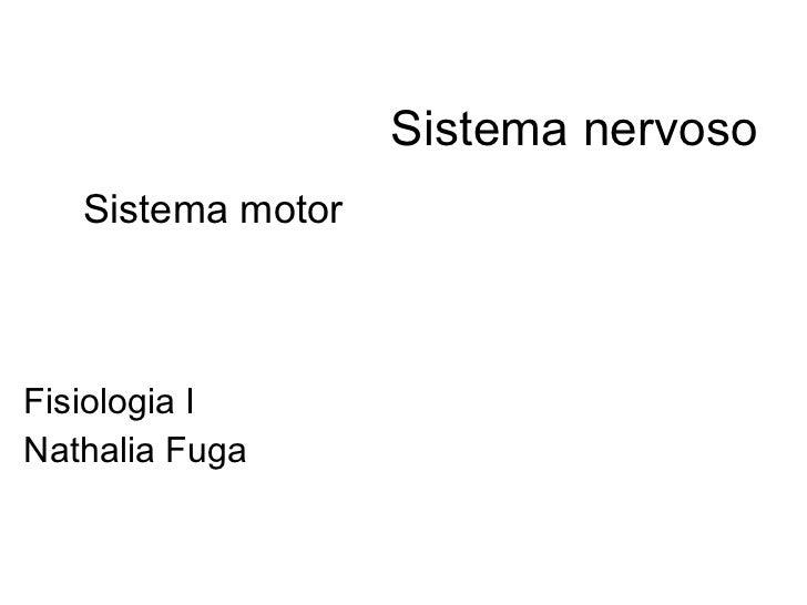 Sistema nervoso Fisiologia I Nathalia Fuga Sistema motor