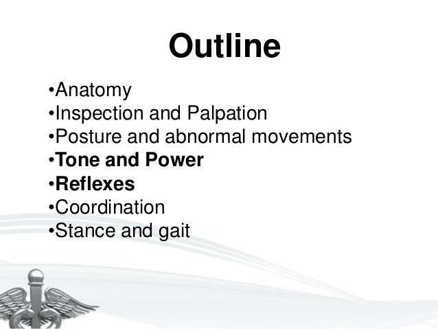 Motor System Examination Slide 2