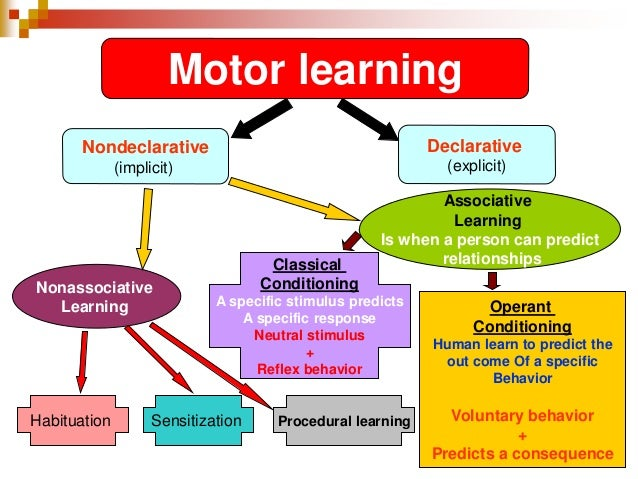 the relationship between learning and memory from a functional perspective Discuss the relationship between learning and memory from a functional perspective address why learning and memory are  for understanding the learning-to-memory.