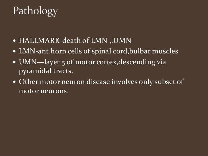 M o t o r n e u r o n d i s e a s e s for Bulbar motor neuron disease