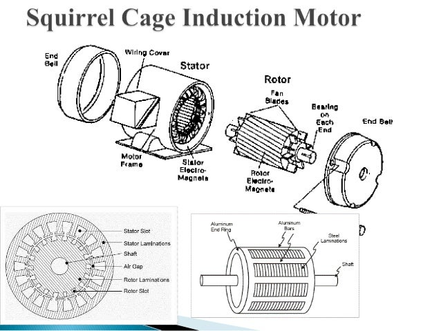 squirrel cage motor diagram