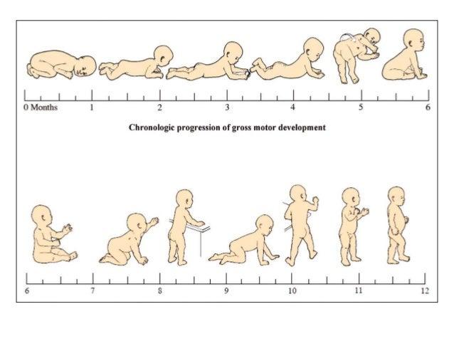 Motor skills for Stages of motor development