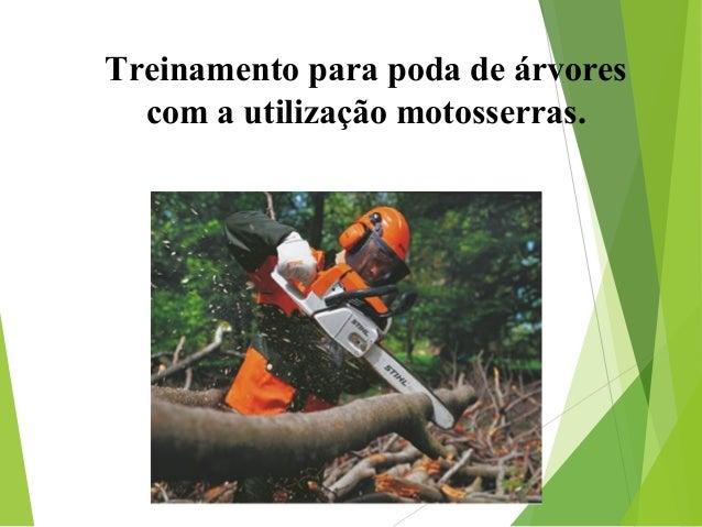 Treinamento para poda de árvores com a utilização motosserras.