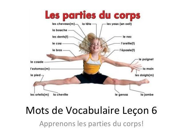 Mots de Vocabulaire Leçon 6 Apprenons les parties du corps!