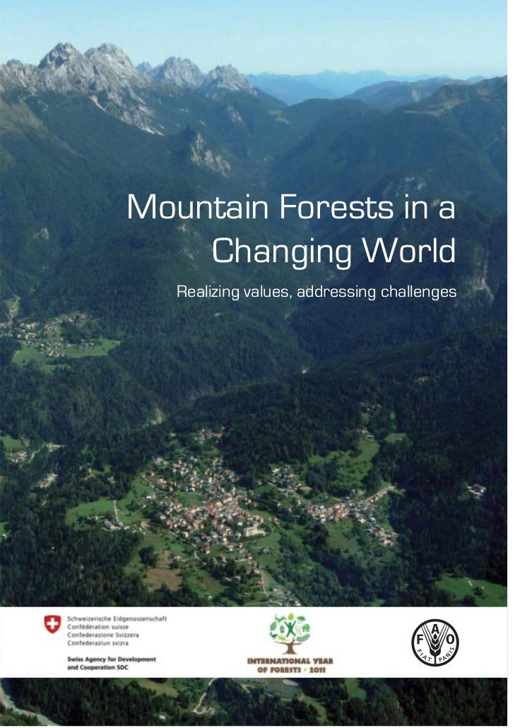 Mountain Forests in a    Changing World   Realizing values, addressing challenges