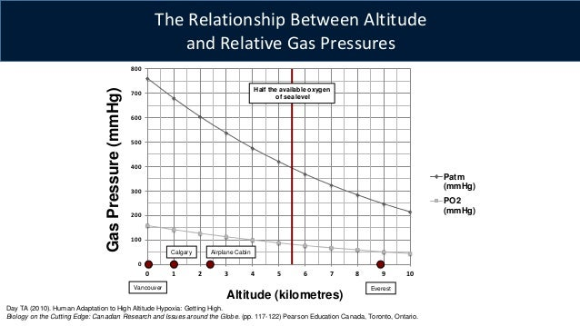 the effects of altitude on the human physiology Human anatomy and physiology: the effects of altitude on human physiology human anatomy and physiology: the effects of altitude on human physiology.