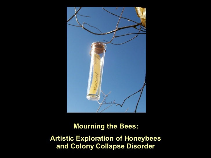 Mourning the Bees: Artistic Exploration of Honeybees and Colony Collapse Disorder