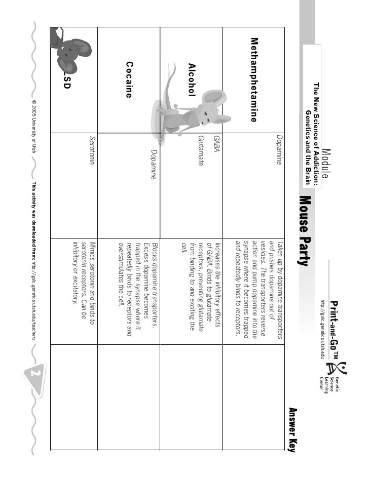 Mouse Party Worksheet Answers - FREE Printable Worksheets