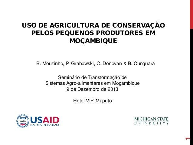 USO DE AGRICULTURA DE CONSERVAÇÃO PELOS PEQUENOS PRODUTORES EM MOÇAMBIQUE 1 B. Mouzinho, P. Grabowski, C. Donovan & B. Cun...