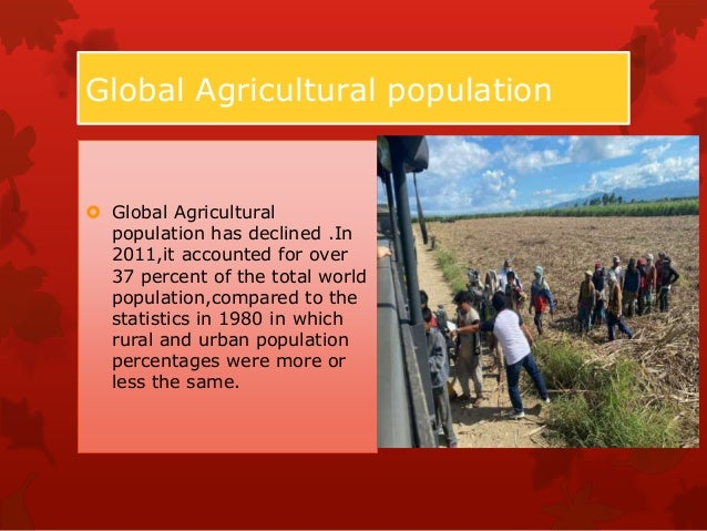 Global agriculture towards 2050  The challenge Agriculture in the 21st century faces multiple challenges: it has to produ...