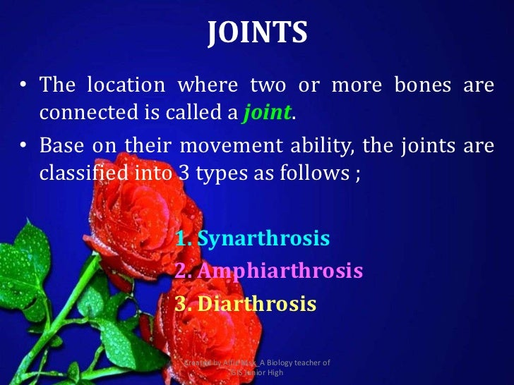 JOINTS• The location where two or more bones are  connected is called a joint.• Base on their movement ability, the joints...