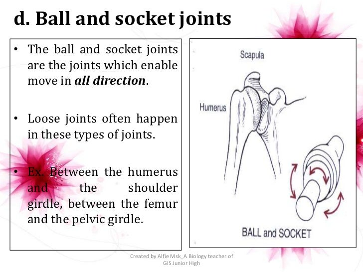 d. Ball and socket joints• The ball and socket joints  are the joints which enable  move in all direction.• Loose joints o...