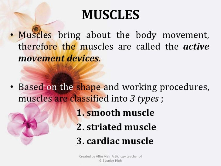 MUSCLES• Muscles bring about the body movement,  therefore the muscles are called the active  movement devices.• Based on ...