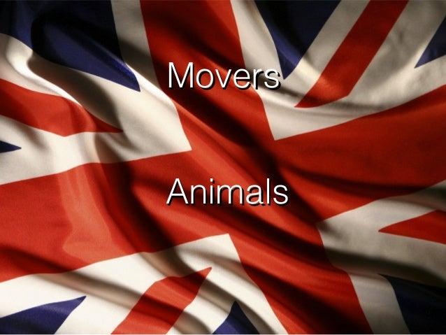 Movers Animals