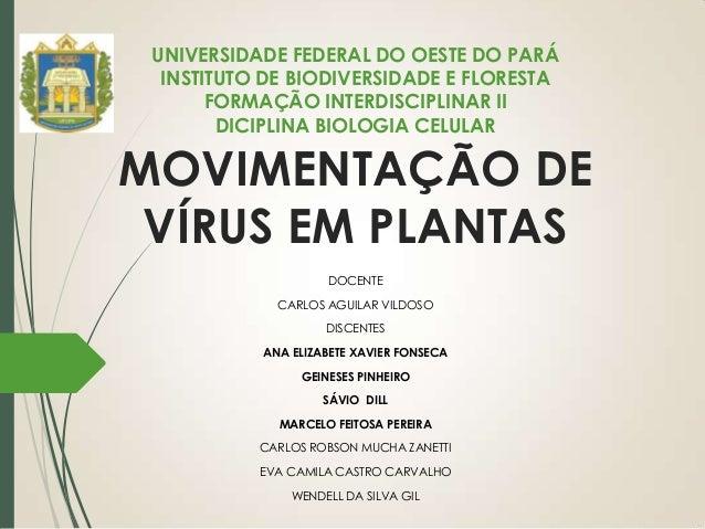 MOVIMENTAÇÃO DE VÍRUS EM PLANTAS DOCENTE CARLOS AGUILAR VILDOSO DISCENTES ANA ELIZABETE XAVIER FONSECA GEINESES PINHEIRO S...