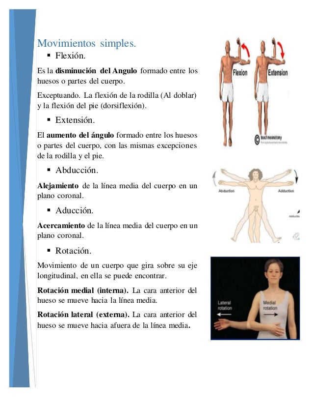 Movimientos anatomicos