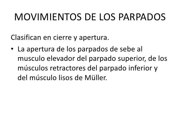 MOVIMIENTOS DE LOS PARPADOS<br />Clasifican en cierre y apertura.<br />La apertura de los parpados de sebe al musculo elev...