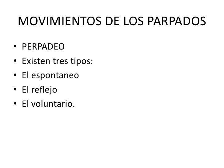 MOVIMIENTOS DE LOS PARPADOS<br />PERPADEO<br />Existen tres tipos:<br />El espontaneo<br />El reflejo<br />El voluntario.<...