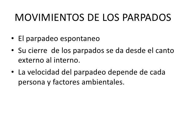 MOVIMIENTOS DE LOS PARPADOS<br />El parpadeo espontaneo<br />Su cierre  de los parpados se da desde el canto externo al in...