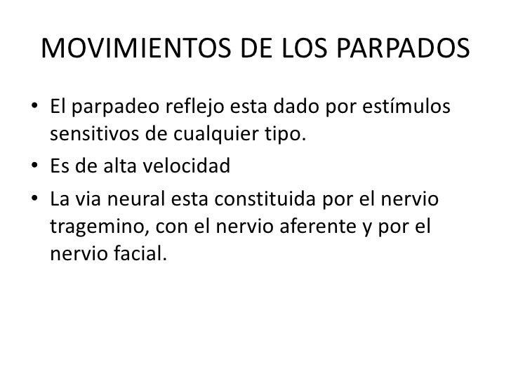 MOVIMIENTOS DE LOS PARPADOS<br />El parpadeo reflejo esta dado por estímulos sensitivos de cualquier tipo. <br />Es de alt...