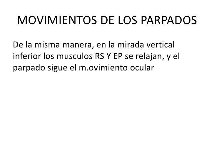 MOVIMIENTOS DE LOS PARPADOS<br />De la misma manera, en la mirada vertical inferior los musculos RS Y EP se relajan, y el ...