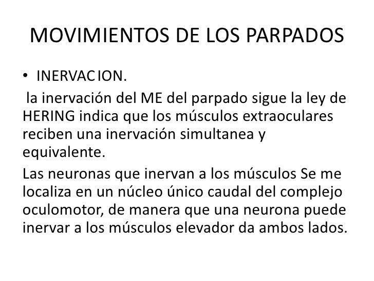 MOVIMIENTOS DE LOS PARPADOS<br />INERVACION.<br /> la inervación del ME del parpado sigue la ley de HERING indica que los...