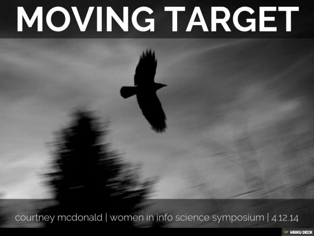 Moving Target: Insights from an Accidental Technologist