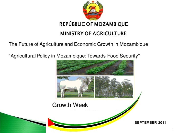 REPÚBBLIC OF MOZAMBIQUE                      MINISTRY OF AGRICULTUREThe Future of Agriculture and Economic Growth in Mozam...