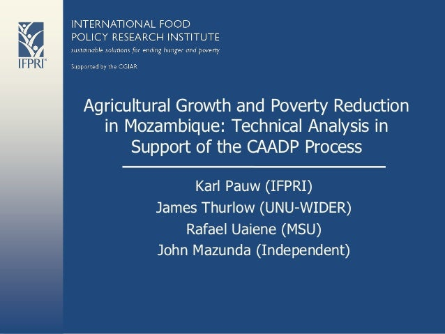 Agricultural Growth and Poverty Reduction  in Mozambique: Technical Analysis in      Support of the CAADP Process         ...